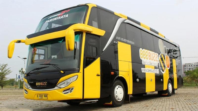 saturental-foto-bus-pariwisata-beebuzz-hdd-shd-terbaru-48-59-seats-b